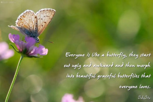 Butterfly Quotes Credited