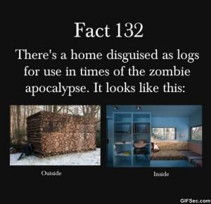 Zombie-apocalypse.jpg