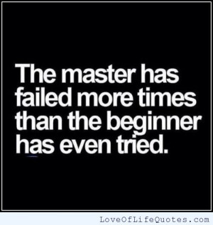 The master has failed more times than the beginner has even tried.