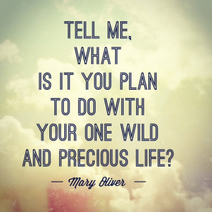 ... this post that begins with the famous quote from poet Mary Oliver