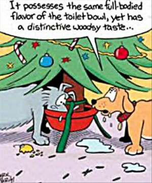 funny christmas comics, funny pictures