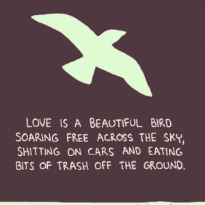 Love is a beautiful bird soaring free across the sky, shitting on cars ...