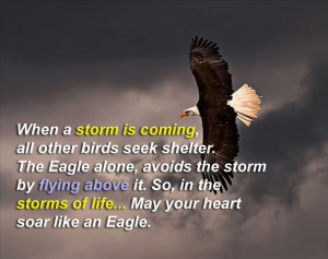 may-your-heart-soar-like-an-eagle-life-quotes-sayings-pictures.jpg