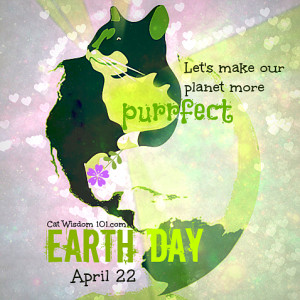 ... day of the year day absurd. He said every day is Earth Day for cats