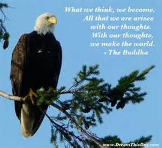 ... quotes daily motivation bald eagles inspiration quotes quotes about