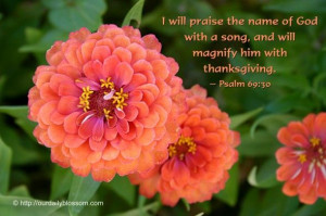 will praise the name of God with a song, and will magnify him with ...