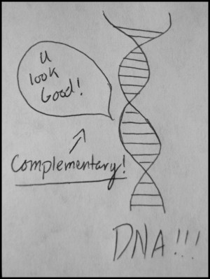 Biology Funny Quotes I'm just going to be funny!