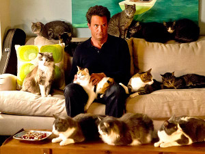 Matthew Perry Stars with Cats on Go On