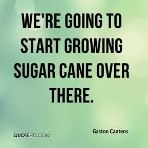 Sugar cane Quotes
