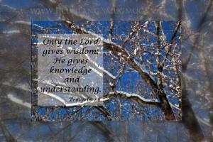 Scripture & Quotes