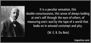 It is a peculiar sensation, this double-consciousness, this sense of ...