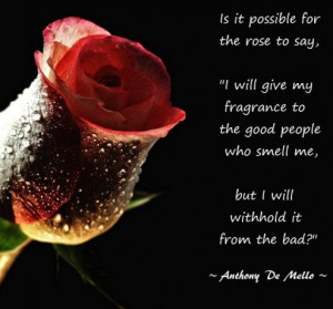 Rose Quote photo Is-it-possible-for-the-rose.jpg