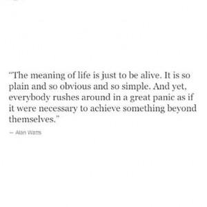 Alan Watts was a wise man.