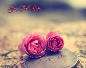 Quote Design Maker - Love Pink Roses Quotes