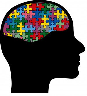 Brain Fitness: Train Now, Regret Never