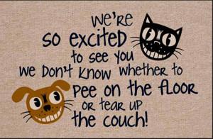 Creatively Funny Doormats (24 Mats)