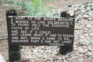 Picnic At Walden Pond. Thoreau On Walden Pond. View Original ...