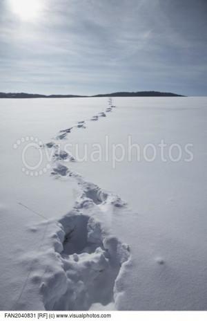 footprints_in_snow_covered_landscape_FAN2040831.jpg