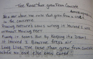 """An allusion to 2Pac 's poem """"The Rose that Grew from Concrete"""" ."""