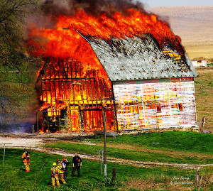 a criticism of barn burning by william faulkner Barn burning is a story developed and written by william faulkner the story takes a stage of a boy who is the main character, with his father the boy decides not to be governed by the directions of his father.