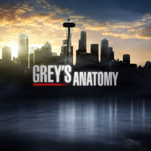 greys anatomy quotes greysqts tweets 15 8k following 242 followers ...