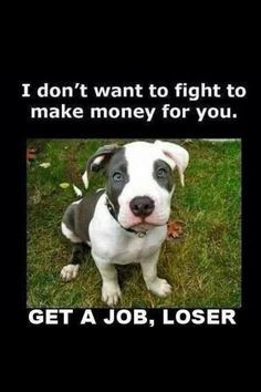 love pit bulls, they just have a bad rep:(