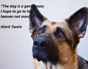 ... the-dog-is-a-gentleman-i-hope-to-go-to-his-heaven-not-mans-mark-twain