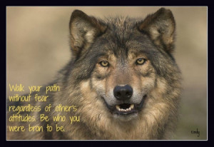 Wolf Wisdom - friendship, white, wisdom beautiful, grey wolf, wild ...
