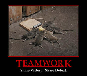 Teamwork - share victory, share defeat. Five mice caught in mousetrap ...