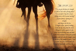 One of my favorite horse Bible verses!!