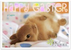 Happy Easter!!!