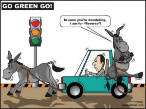 Funny Pictures-Car-Donkey-Images-Photos- Green