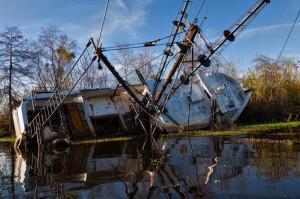 Hurricane Katrina Quotes