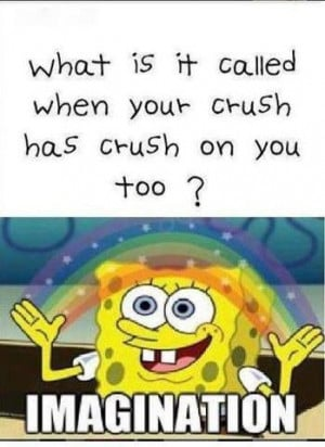 what is it called when your crush has crush on you too imagination