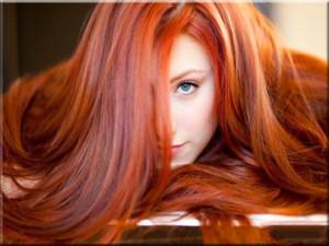 Women - Hair Woman Girl Female Redhead Red Hair Ginger Long Hair ...