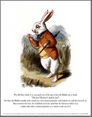 Rabbit ( Alice in wonderland )