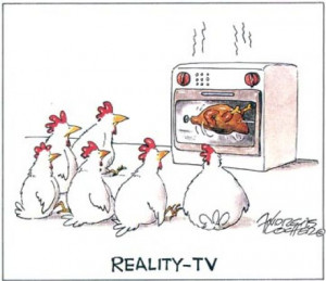 Funny Picture Chicken R eali ty TV