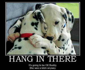 Hang In There Inspirational Life Quotes