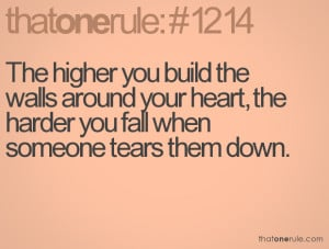 The Higher You Build Walls
