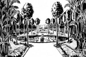 Burle Marx nas praças do Recife (1)