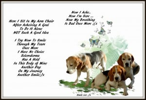 ... My Beagle Smiles ... My Poems ... My Quotes , Scleroderma and Me ;)x