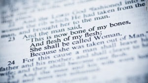 My Take: The Bible really does condemn homosexuality