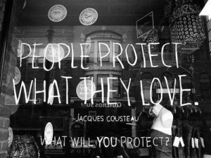 Protect what you love.