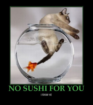 In Mexico we have a word for sushi: bait. ~José Simons