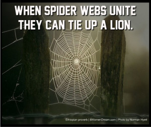 ... Do It Alone: When spider webs unite, they can tie up a lion quote