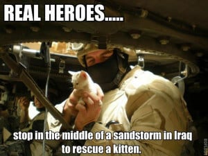 Behind the Photo: Soldiers Save Kitten from Iraq Sandstorm