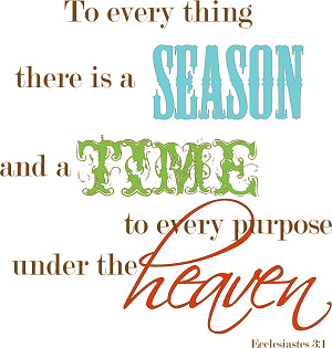 Ecclesiastes 3 Bible Commentary - There Is A Season
