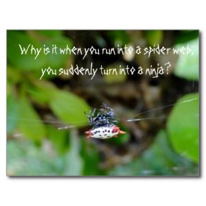 crab_spider_postcard_funny_ninja_quote ...