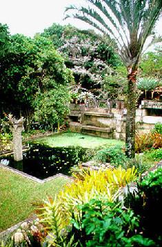 NYT: Jardim Botânico de NY faz homenagem a Burle Marx
