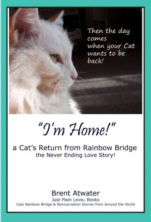 Cat's Rainbow Bridge, the Poem, the Book, the Video by Brent Atwater ...